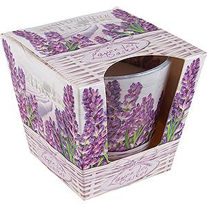 Lichterwelt Kerzen JEKA-Duftkerze - Lavender Basket - Fresh Lavender - 8,1 cm