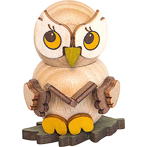 Gift Ideas Back to School Owl Child with Book - 4 cm / 1.6 inch