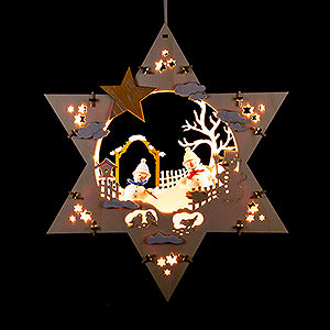 World of Light Window-Pictures Window Picture - Winter Star - 28 cm / 11 inch