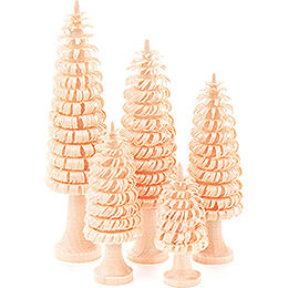 Coiled Trees with Trunk Natural - 5 pieces - 11 cm / 4.3 inch