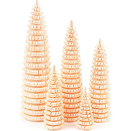 Coiled Trees without Trunk - 5 pieces - 12 cm / 4.7 inch