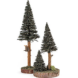 Conifers with Bird House - Green - 2 pieces - 27 cm / 10.6 inch