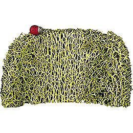 Hedge with Lady Bug, 3 Stück - 4,5 cm / 2 inch