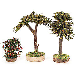 Mixed Trees - 3 pieces - 12,5 cm / 4.9 inch